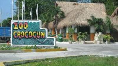 Crocodile Park Puerto Morelos